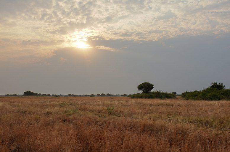 Wat doet de hype Kony 2012 met het toerisme van Oeganda?