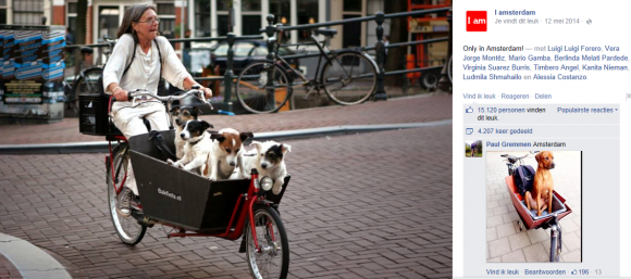 hond in bakfiets i amsterdam