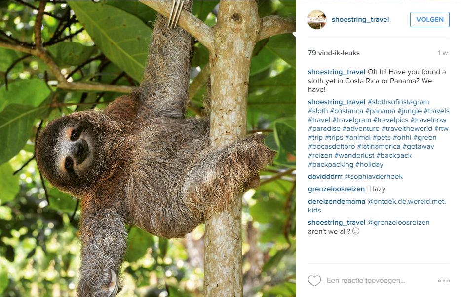 Blog Duurzaamheid - Shoestring Instagram