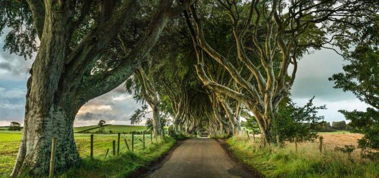 De bestemming Noord-Ierland vermarkten als 'Game of Thrones Grondgebied'