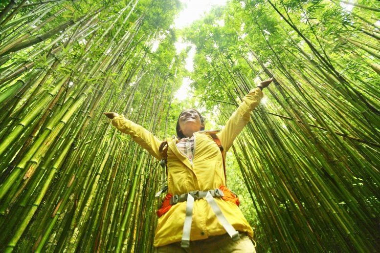 Vakantieganger wil keuze voor duurzame vakantie zelf kunnen maken